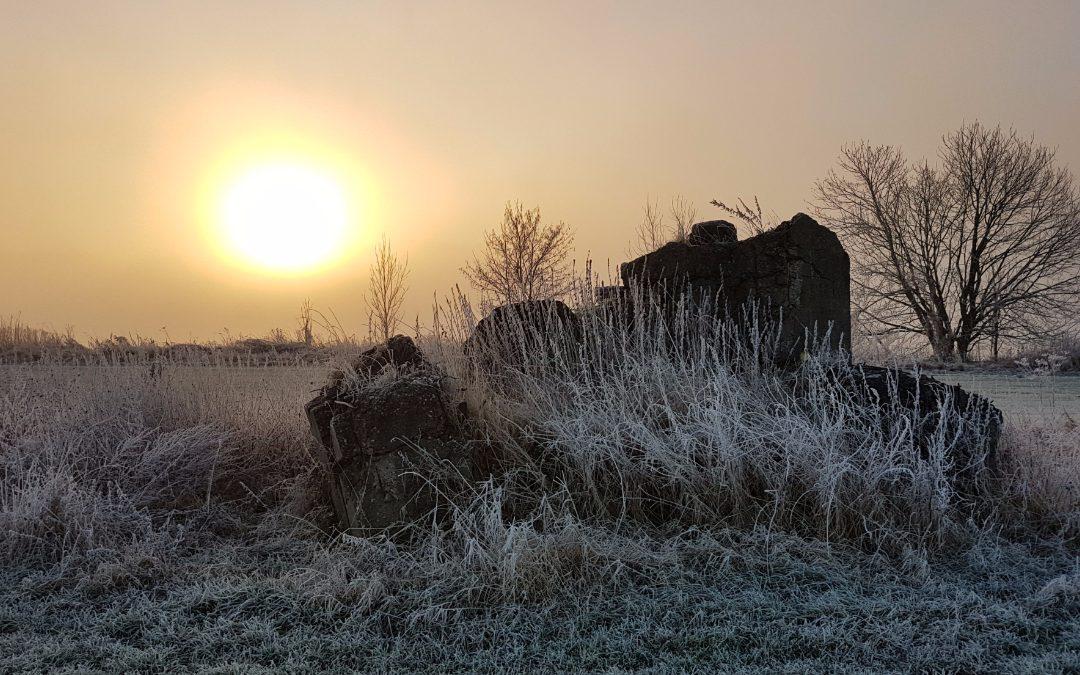Heerlijke ochtend met opkomende zon in de mist (foto's)